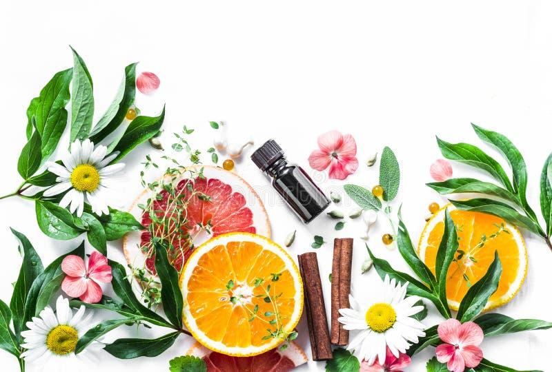 Óleo essencial para a pele da beleza Ingredientes lisos da beleza da configuração em um fundo claro, vista superior Conceito saud