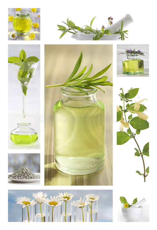 Óleos essenciais e flores do fitoterapia foto de stock