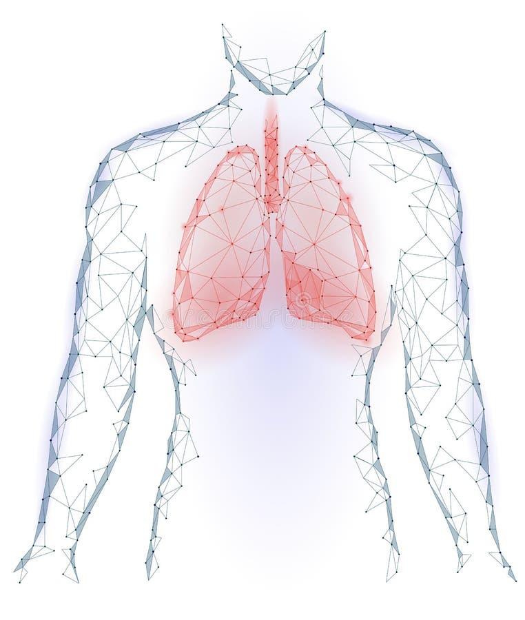 Órgão interno da infecção pulmonaa humana dos pulmões Sistema respiratório dentro da silhueta do corpo Baixo Dots Triangle Pol co ilustração royalty free
