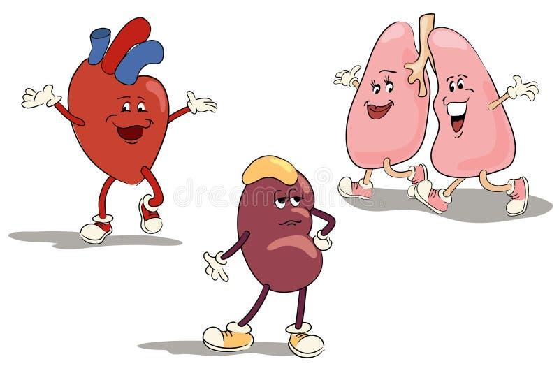 Órgãos internos 1 do jogo de caracteres ilustração royalty free