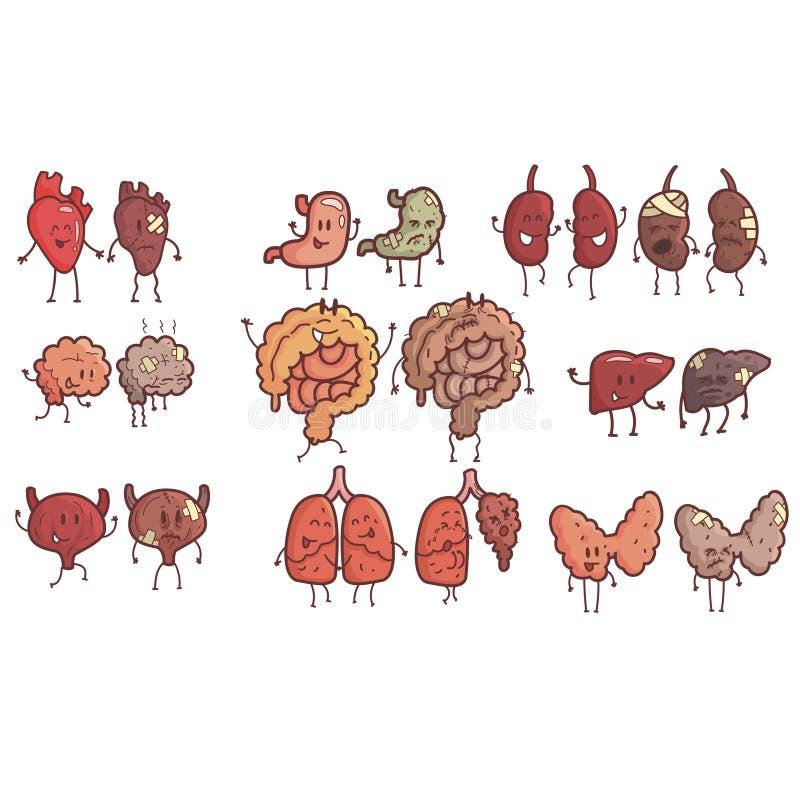 Órgãos internos humanos saudáveis contra o grupo insalubre de pares esboçados engraçados anatômicos médicos do caráter cômico de  ilustração do vetor