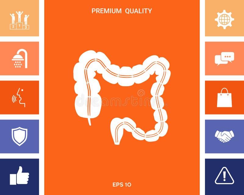 Órgano humano - el intestino grueso stock de ilustración