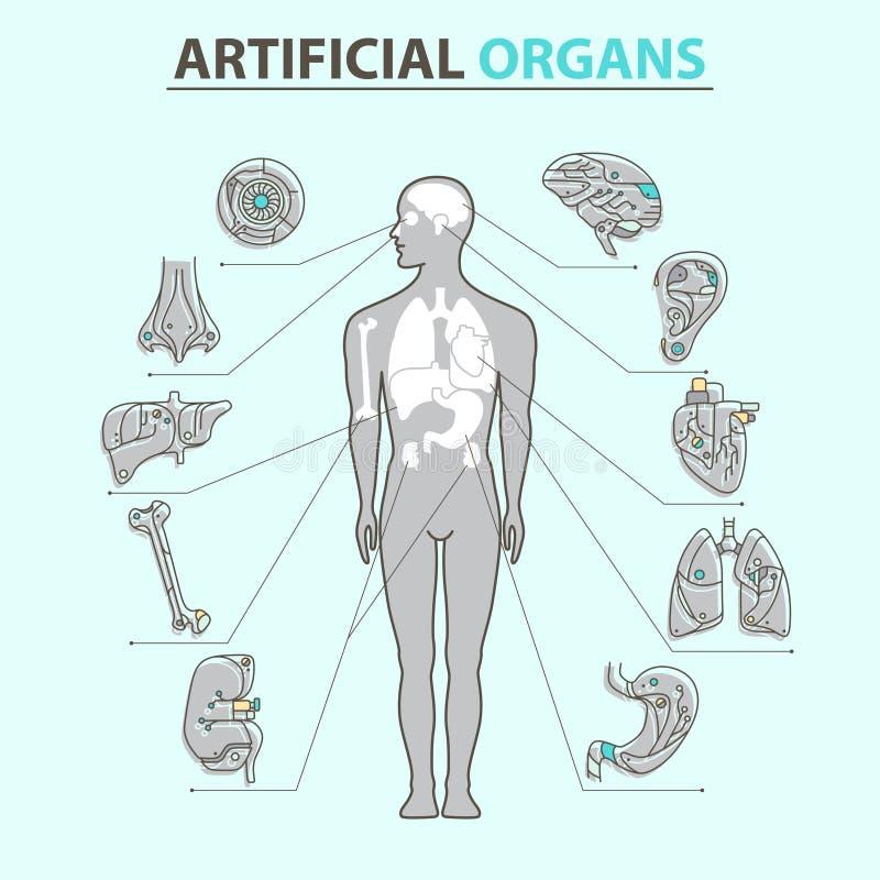 Órganos artificiales - línea fina 10 libre illustration