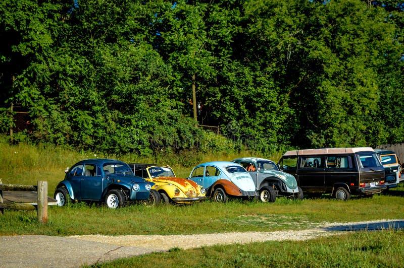 Ônibus retros dos carros do cemitério de automóveis de Volkswagon foto de stock royalty free