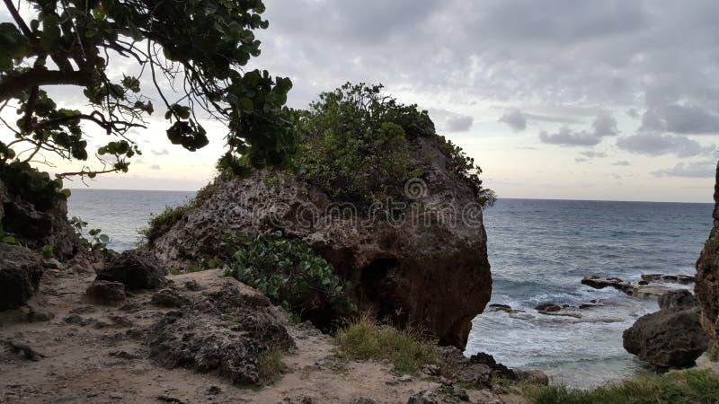 Ö av Isabela, Puerto Rico arkivbilder