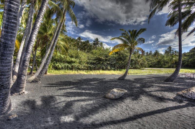 Ö Hawaii för strand för Punaluu svartsand stor royaltyfri bild
