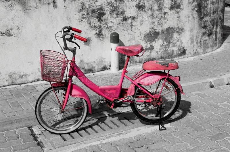 Ö Maldiverna för atoll för rosa färgcykelMeedhoo Raa royaltyfri foto