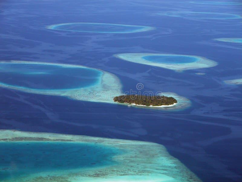 ö Maldivian Royaltyfri Foto