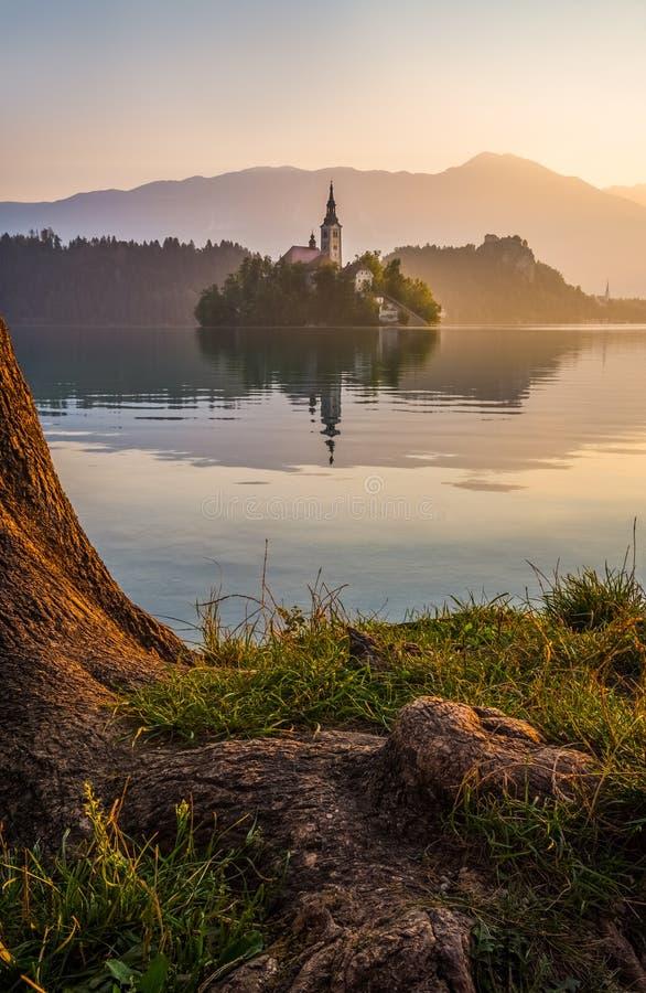 Ö med kyrkan i den blödde sjön, Slovenien på soluppgång arkivbilder
