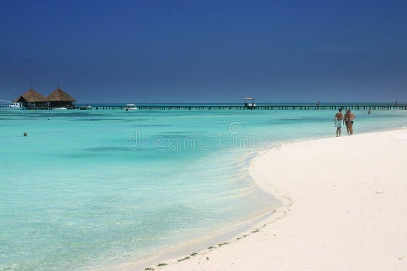 öar maldives royaltyfri bild