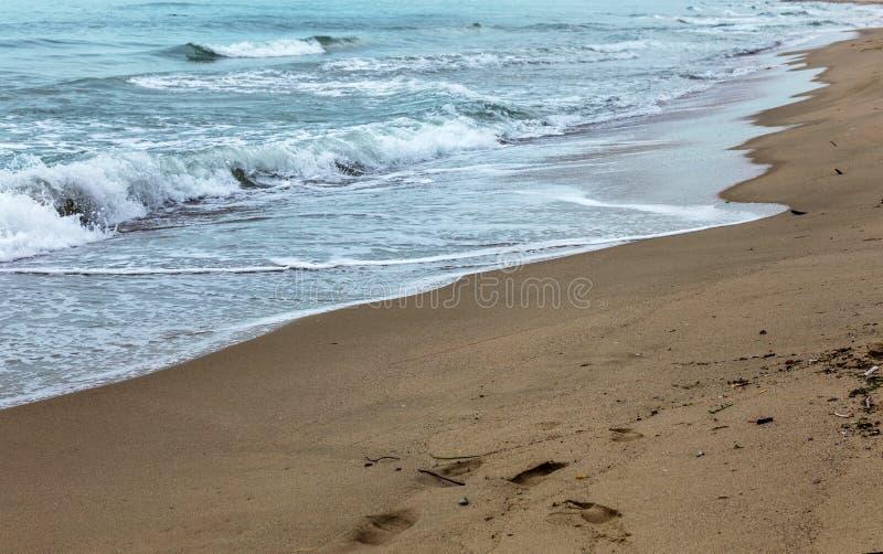 Öde lös strand utan folk Härlig lös strand med cl royaltyfri foto