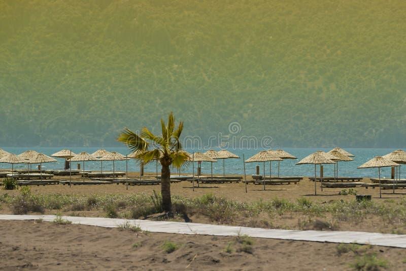 Öde sandig strand arkivfoton
