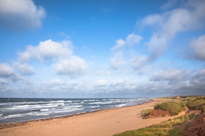 Öde strand och krabba hav på prinsen Edward Island arkivfoto