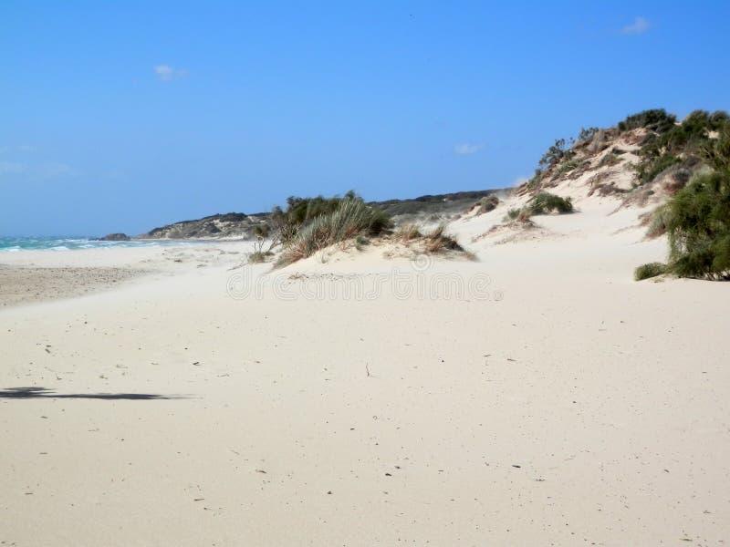 Öde stranddyn på blåsig dag royaltyfria foton