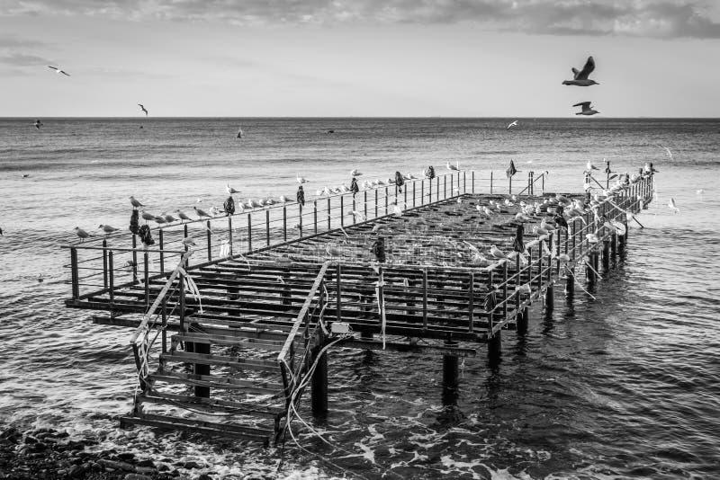 Ödelagd stålkonstruktion Pier On Seaside arkivfoto