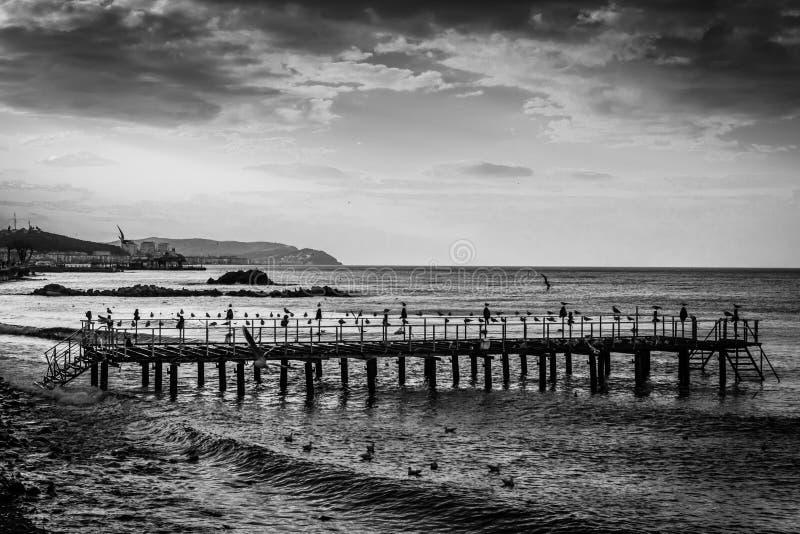 Ödelagd stålkonstruktion Pier On Seaside royaltyfri bild