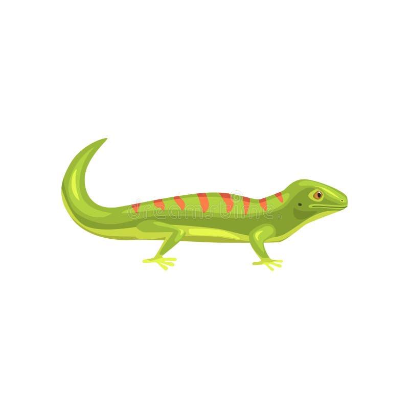 Ödla amfibisk djur tecknad filmvektorillustration vektor illustrationer