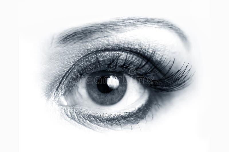 Öffnen Sie Augennahaufnahme stockfotos