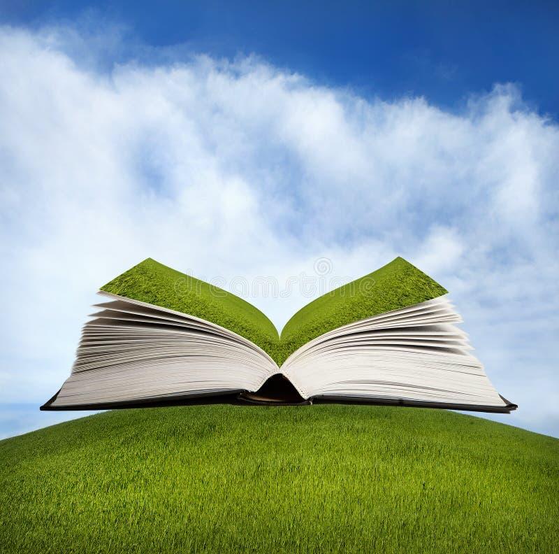 Öffnen Sie Buch mit grünem Gras stockfoto