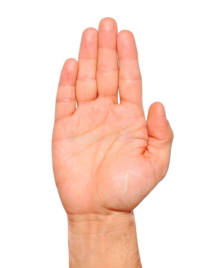 Öffnen Sie das Palmenhandzeichen der männlichen Hand lokalisiert stockbild