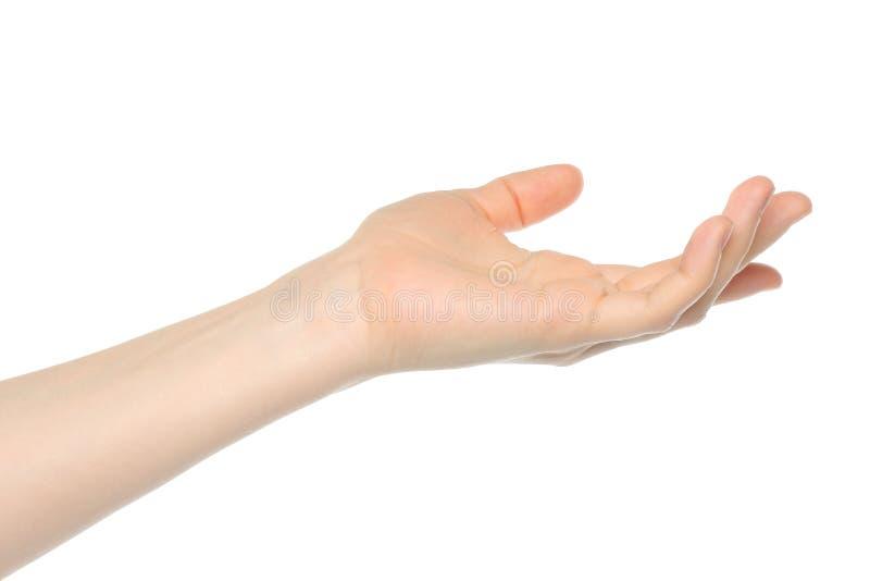 Öffnen Sie Frauenhand lizenzfreies stockbild