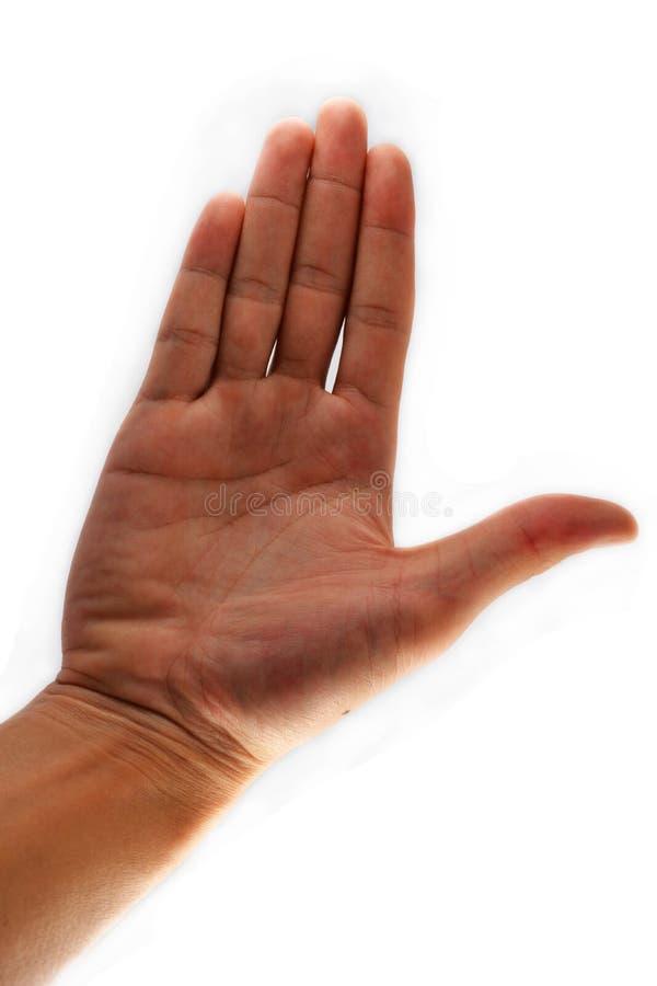 Öffnen Sie Hand stockbild