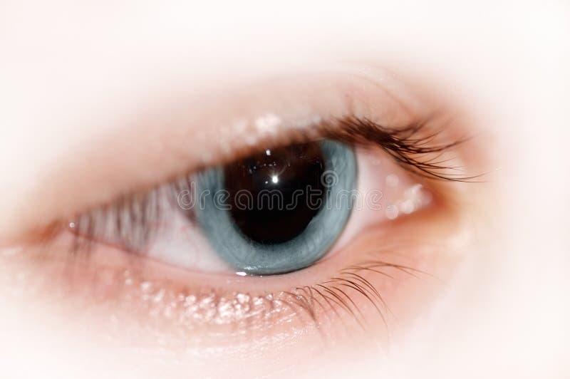 Download Öga fotografering för bildbyråer. Bild av mänskligt, cornea - 3547489
