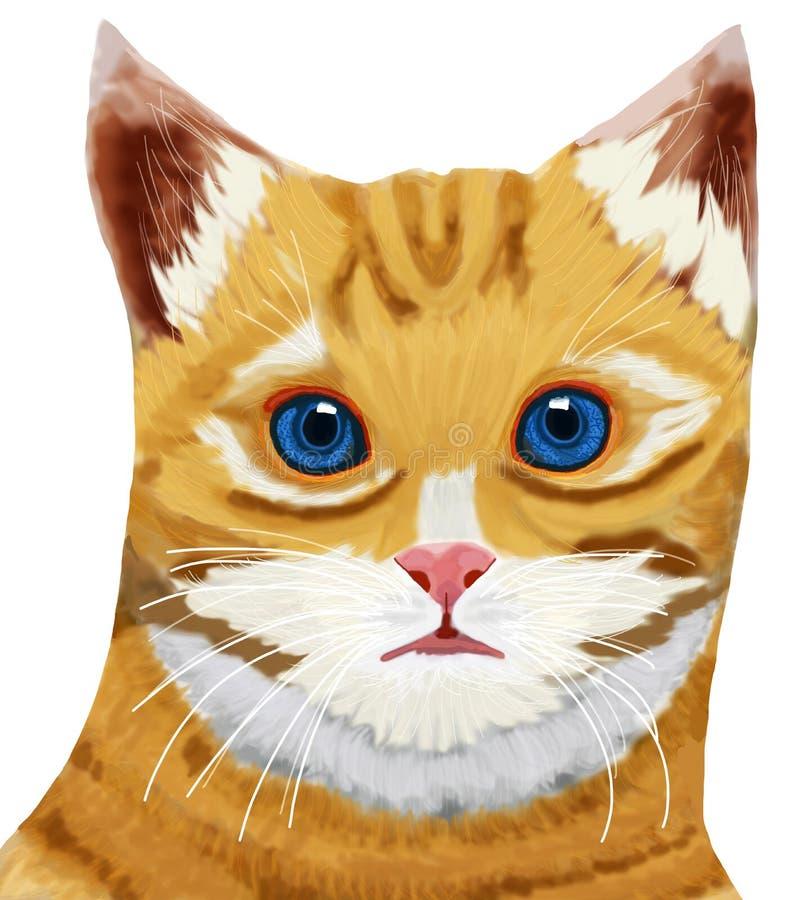 Öga för huvud för strimmig kattkatt blått fotografering för bildbyråer