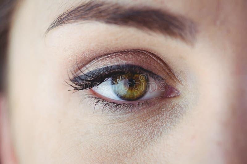 Öga med eyeliner och ögonskugga arkivbilder