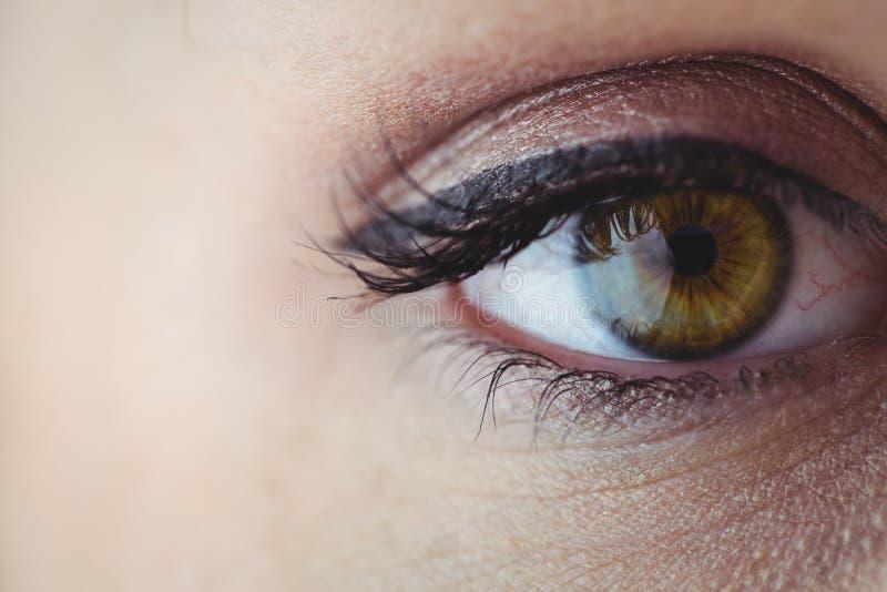 Öga med eyeliner och ögonskugga arkivfoton