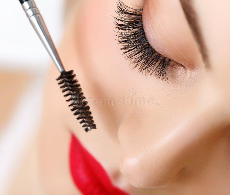 Öga med härlig makeup och långa ögonfrans. royaltyfria bilder