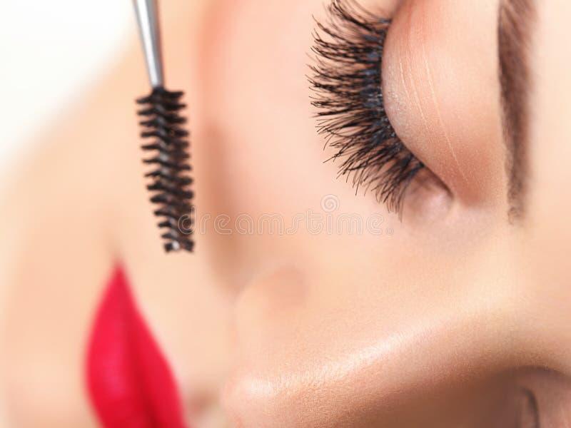 Öga med härlig makeup och långa ögonfrans. royaltyfri fotografi