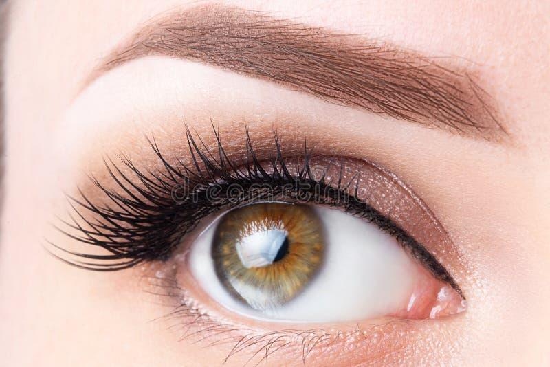 Öga med långa ögonfrans och ljust - brun ögonbrynnärbild Ögonfranslamination som microblading, tatuering, permanent, cosmetology, royaltyfria bilder