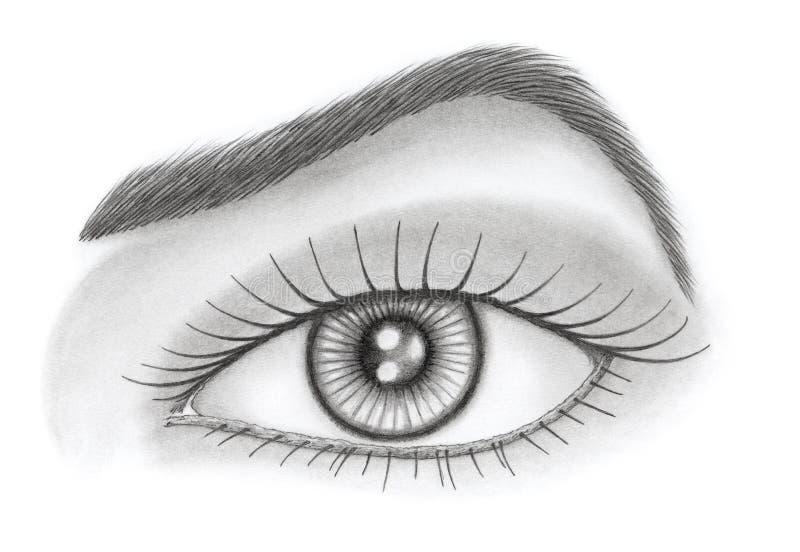 Öga och krön över vit bakgrund stock illustrationer