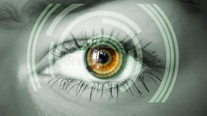 Öga som beskådar digital information arkivfoto