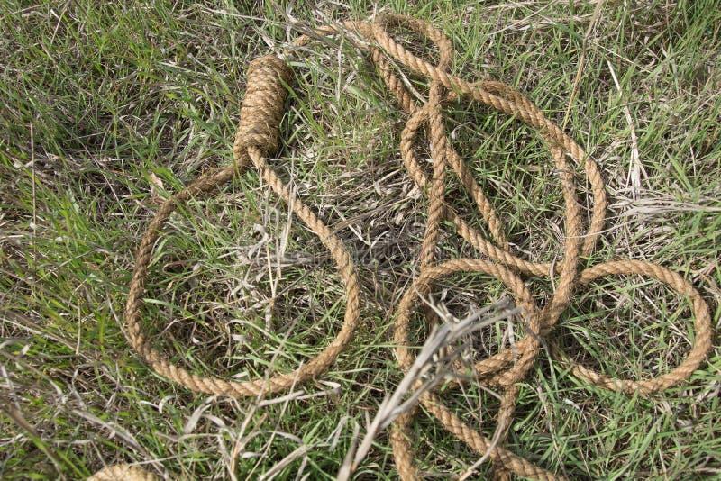 Ögla av repet royaltyfria foton