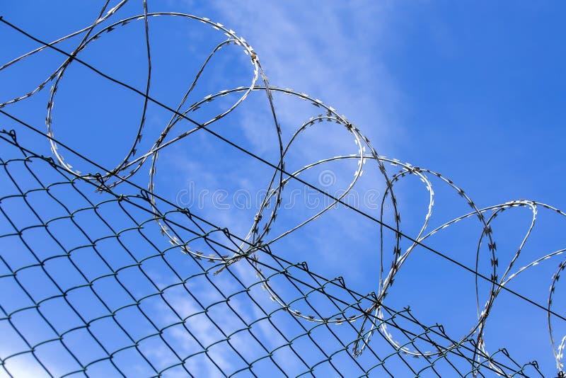 Öglor av broddad eller rakknivtråd som krullar runt om långa elasticiteter av försett med en hulling - binda mot en blå himmel, s arkivbild