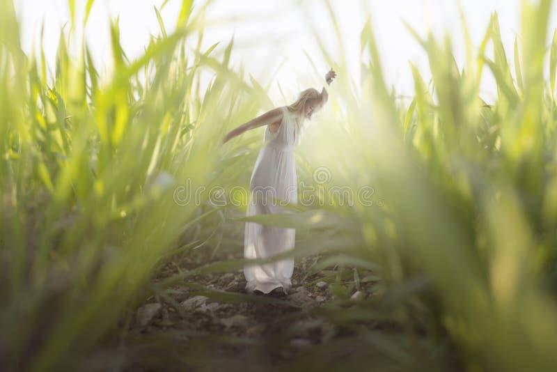 ögonblick av en ung kvinna som kopplar av i mitt av gigantiskt gräs royaltyfria bilder