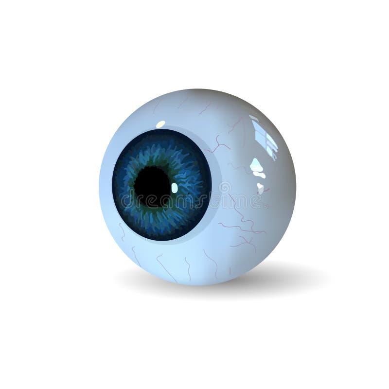 Ögonboll på vit bakgrund arkivfoto