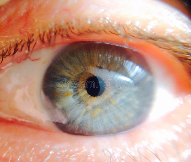 Ögonbollslut upp arkivfoton