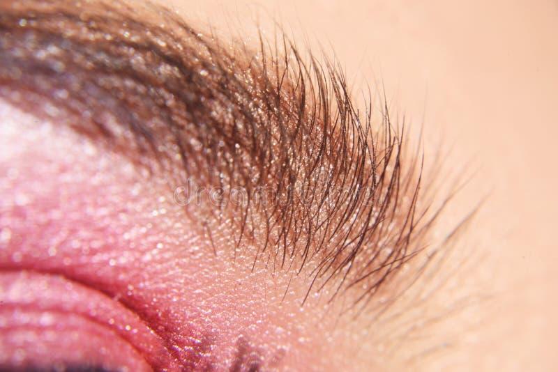 Ögonbrynmakro Stäng sig upp av öga med härlig brunt med rosa makeup för skuggasmokeyögon Modernt modesmink 15 woman young royaltyfri bild