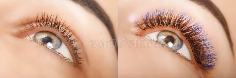 Ögonfransförlängning Jämförelsen av kvinnlign synar före och efter Blåa ombresnärtar royaltyfria bilder