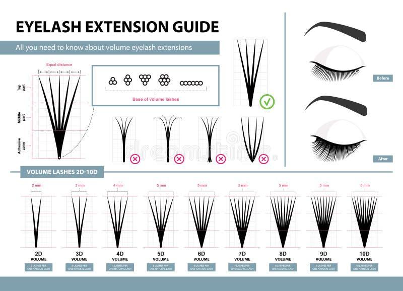 Ögonfransförlängningshandbok Volymögonfransförlängningar 2D - volym 10D Spetsar och trick Infographic vektorillustration