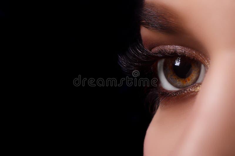 Ögonfransförlängningstillvägagångssätt Kvinnaöga med långa ögonfrans efter förlängningstillvägagångssätt Vita ögonfrans Stranda a arkivbild