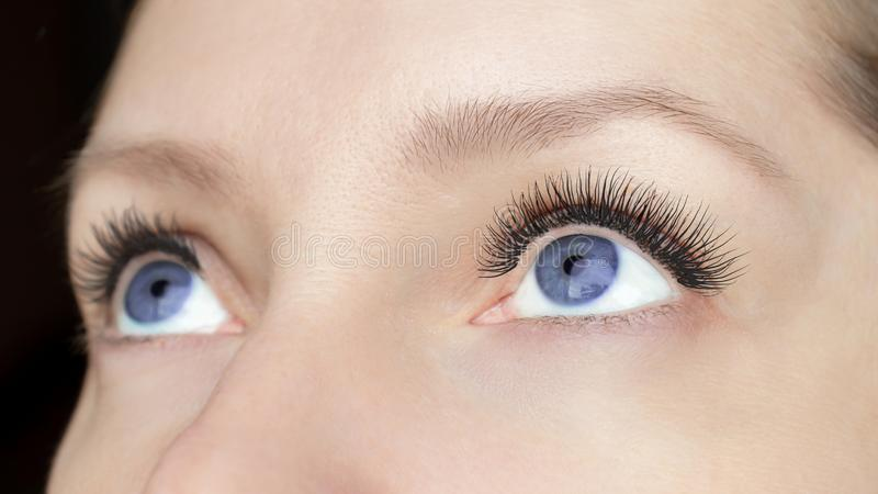 Ögonfransförlängningstillvägagångssätt - kvinnamodeögon med långa falska ögonfrans tätt upp, skönhet, utgör och anletebegreppet royaltyfri fotografi
