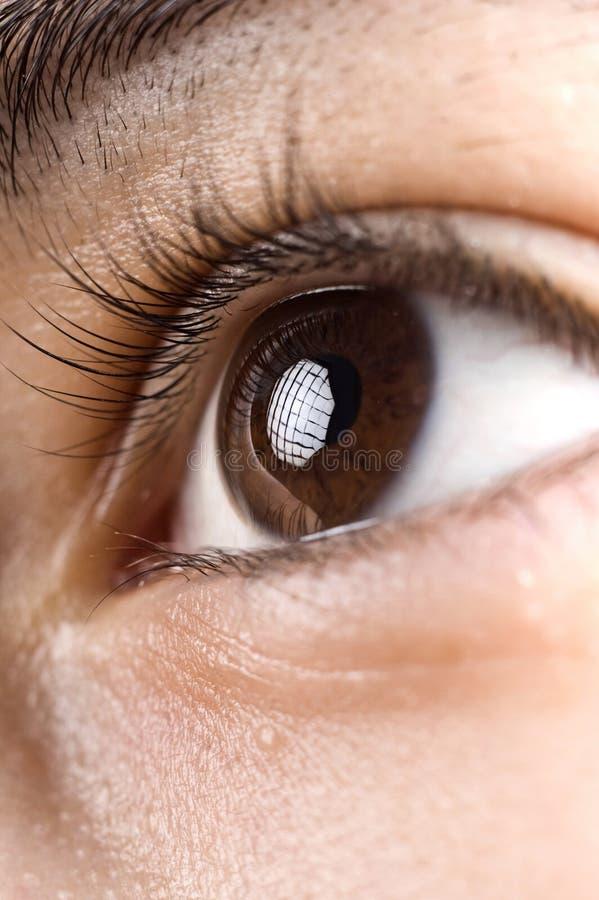 ögonhuman arkivbild