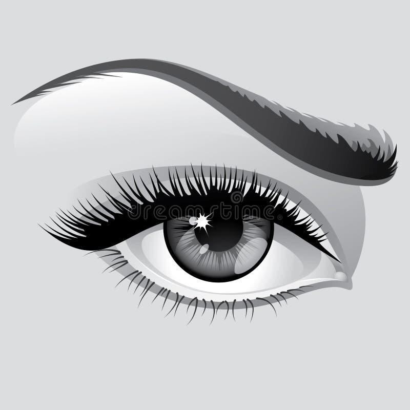ögonkvinna royaltyfri illustrationer