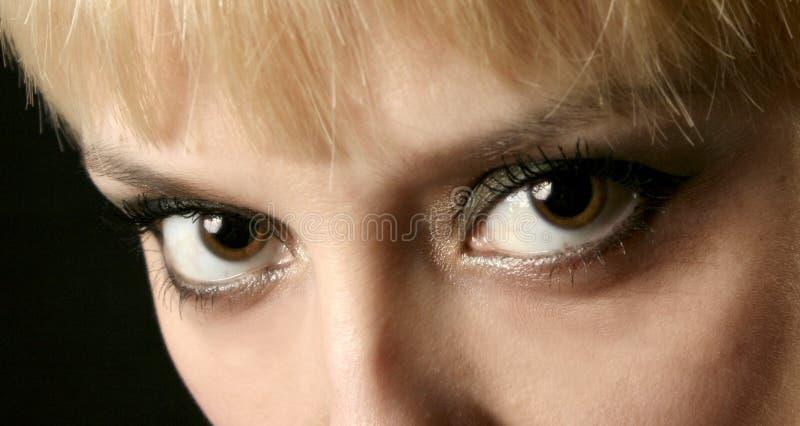 ögonkvinnor royaltyfri foto