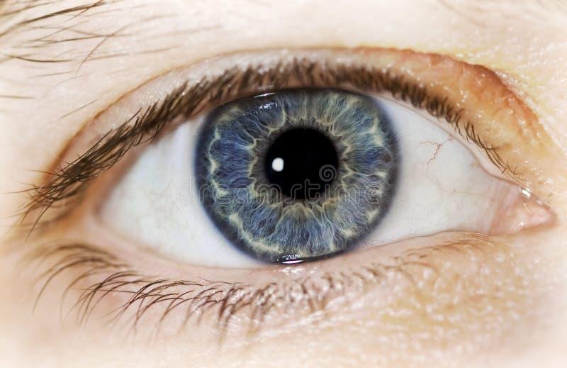 ögonsoul till fönstret arkivbild