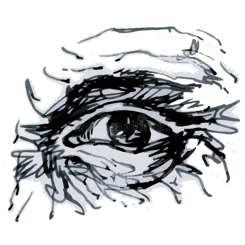 ögonvektor royaltyfri illustrationer